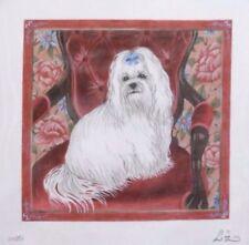 Liz / S. Roberts Large White Maltese Dog Handpainted Needlepoint Canvas