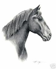 PERCHERON HORSE Equestrian Pencil ART 13 X 17 LARGE DJR