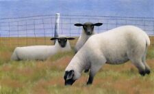 "Alex Colville "" Three Sheep "" signed and numbered limited edition print"