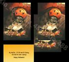 Avanti funny Halloween cards- CAT IN CANDY BUCKET -3 SET-NEW- Ships w/ TRACKING photo