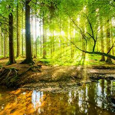 VLIES FOTOTAPETE Selbstklebend XXL WALD Bäume Fluss in 3D Tapeten 3914