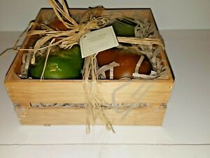 POTTERY BARN ANJOU PEAR SCENTED CANDLES BOUGIES PARFUMEES SET OF 4 ships free