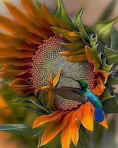 5D Diamond Full Drill Painting Cross Stitch Decor Number 20*25cm 2649 Sunflower