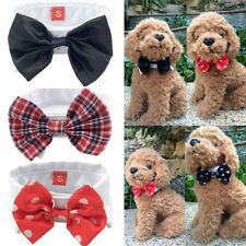 Fashion Adjustable Bow Tie Collar Dickie Bow Tie For Pet Dog Cat 6 Colors HOT
