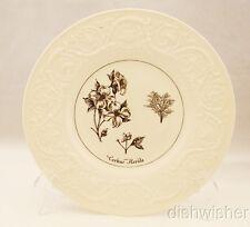 Wedgwood Cornus Florida THE SNUFF MILL / NY BOTANICAL GARDEN SERIES Dinner Plate