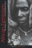 African Feminism: The Politics of Survival in Sub-Saharan Africa by Mikell, Gwe