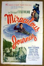 """A plane crash in the Jungel leads to a """"MIRACULOUS JOURNEY"""" - Movie Poster"""