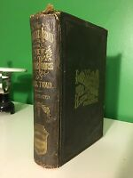 1870 The Innocents Abroad Or The New Pilgrim's Progress Mark Twain 1st Ed 2nd Pr