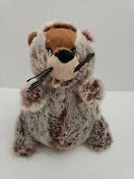 Webkinz Ganz Groundhog Plush Stuffed Animal 8 inch no Code hm179 FUNNY ANIMAL