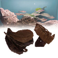 10pcs Natural Terminalia Catappa Leaves Dried Leaves for Fish Tank Aquarium