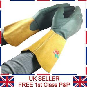 LTG Ladies Gardening Leather Long Gloves Thorn Resistance Garden DIY Work Safety