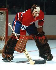 TOWERING HOFer & 6X CUP WINNER #29 Ken DRYDEN MONTREAL Canadiens CUSTOM Lab 8X10
