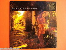 ALL ABOUT EVE – What Kind Of Fool   CD Cardboard Sleeve   Mercury – EVNCD 9