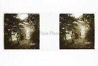 Sottotipo Legno Foto Amateur Placca Da Lente Stereo Ca 1920