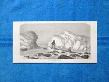 Gravure Année 1864 - Antis traversant un rapide - Antis attraversano una rapida