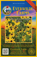 2000 Sweet Black Eyed Susan Wildflower Seeds - Everwilde Farms Mylar Seed Packet