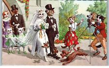 Postcard Cats Alfred Mainzer 4938