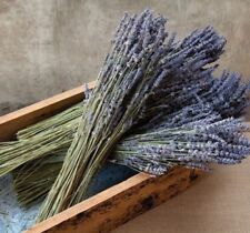 100 STEMS FRENCH NATURAL DRIED LAVENDER BUNCH