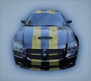GLOSS GOLD (A2) Twin Body Stripes Viper Style 4m x 10cm fits ASTON MARTIN