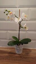 Faux orchid plants