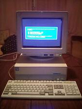 IBM PS/1 80486SX 2133 85MB 1993 RETROCOMPUTER + MONITOR CRT + TASTIERA OTTIMO!