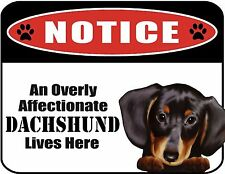 An Overly Affectionate Dachshund (v2) Lives Here 9 x 11.5 Laminated Dog Sign