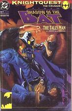 BATMAN -- SHADOW  of the  BAT {DC -  Oct  1993 }   ## 19  TALLY  MAN