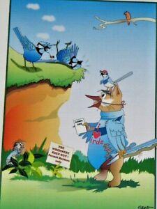 Splendid Blue Fairy Wren & Gerry by Gent Blackwood Valley WA Unframed Print