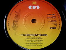 """THE NEW SEEKERS - IT'S SO NICE (TO HAVE YOU HOME)    7"""" VINYL"""