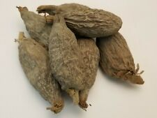 African Alligator Mbongo Hepper Atare Guinea Pepper Spice Seed Pods - (3 Pods)