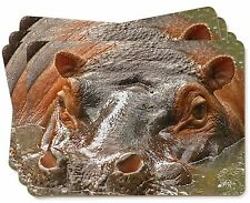Hippopotamus, Hippo Picture Placemats in Gift Box, AHI-1P