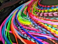 feather extensions XL Bright Grizzly Solid Rainbow Wholesale Salon Kit Tool Bead