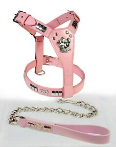 STAFFORDSHIRE BULL TERRIER LEATHER DOG HARNESS & CHAIN LEAD SET, CHROME FITTINGS