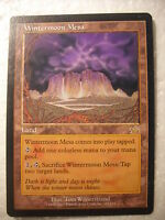 Wintermoon Mesa M:tG Magic the Gathering card MTG Land Prophecy