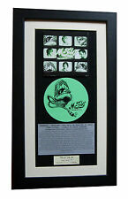McFLY Radioactive CLASSIC CD Album GALLERY QUALITY FRAMED+EXPRESS GLOBAL SHIP