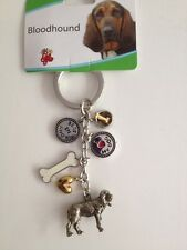 Bloodhound Key Chain With Charms From Little Gifts ~New~
