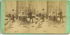 J A Jenny, Flint Mi. stereoveiw camp scene cutting down tree with axes