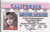 Goldie Hawn novelty collectors id card Drivers License