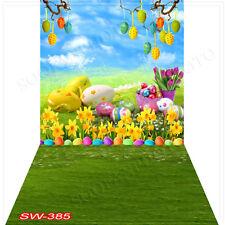 Easterday10'x20'Computer/Digital Vinyl Scenic Photo Backdrop Background SW385B88