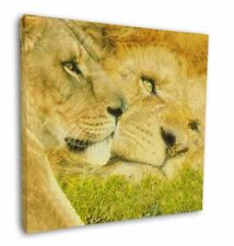 More details for lions in love 12
