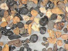 Cretaceous KT KP boundary Hell Creek black tektite glass burn layer dinosaur bed