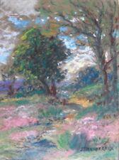 James DESVARREUX-LARPENTEUR - paysage