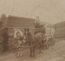 GALLUP SAW MILL, LUMBER YARD, HORSE & WAGON, OCCUPATIONAL, ID'D WORKER PHOTO, NM