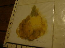 Original ROSE SUSLOVICH ART: signed ONION SPROUTING, behind plastic