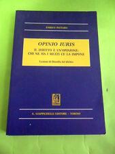 PATTARO.OPINIO IURIS.GIAPPICHELLI.2011