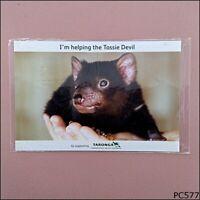 Tassie Devil Taronga Conservation Society Australia Postcard (P577)
