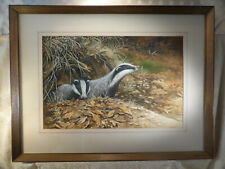 David Parry (b1942) Original Badger WildLife Gouache Painting Signed Framed 29""