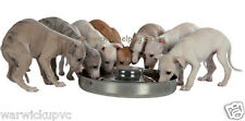 """Trixie Puppy saucer weaning feeding bowl stainless steel Extra Large 15"""" Seconds"""