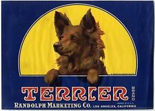"""TERRIER"" DOG~ORIGINAL 1920s RARE LOS ANGELES CALIFORNIA LEMON FRUIT CRATE LABEL"