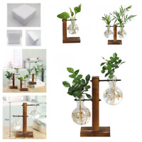Wooden Frame Hydroponic Flower Pot Terrarium Transparent Glass Plant Vase Decor